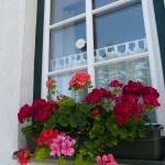 Sommerfenster 1